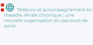 Agnès Caillette Beaudoin - Télésuivi et accompagnement en maladie rénale chronique